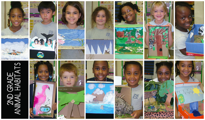 2nd grade collage